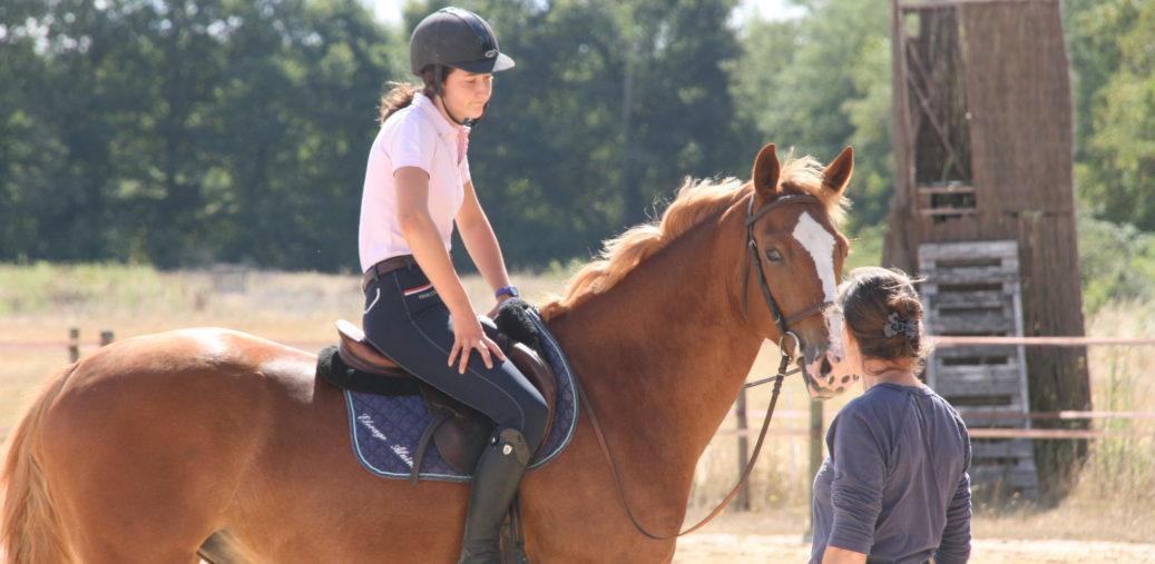 récupération active récupération passive faire récupérer son cheval après leffort