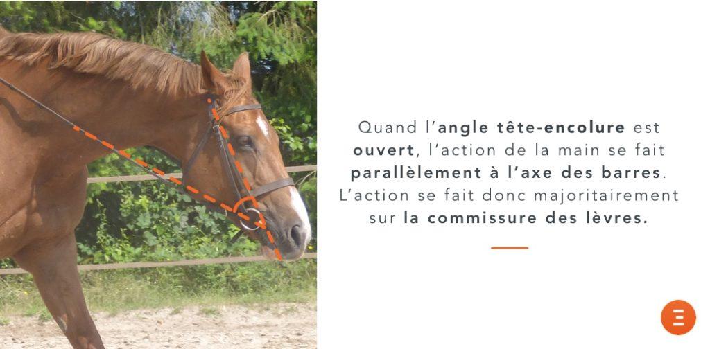 action sur la commissure des lèvres d'un mors simple cheval