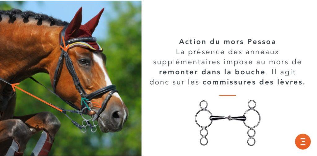 action mors pessoa cheval