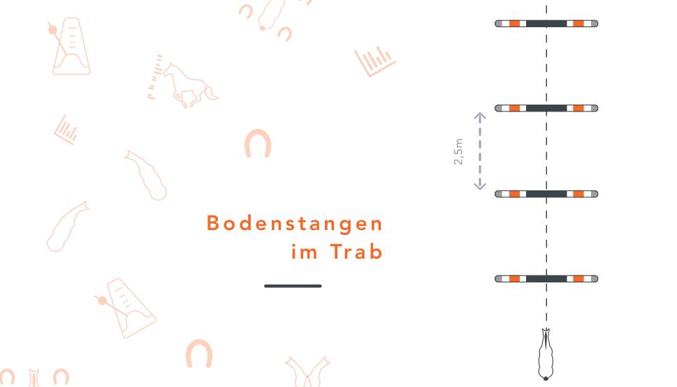Bodenstangen_Trab