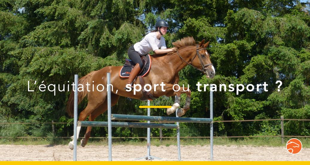 équitation sport