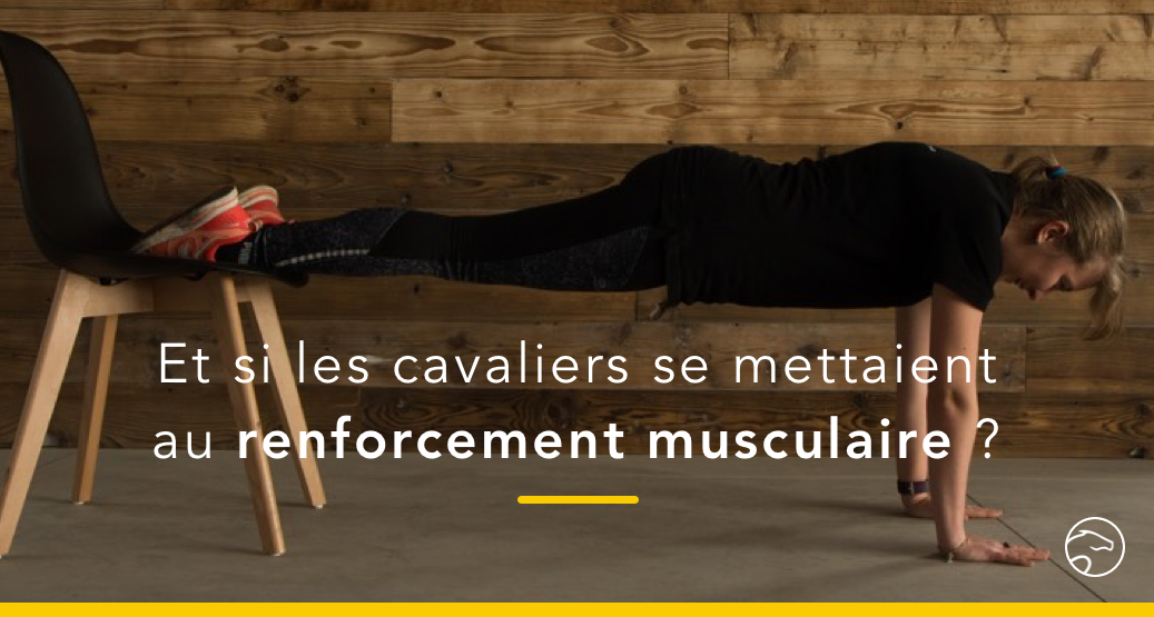 muscles cavalier gainage