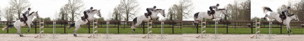 Les phases du saut et comment le cavalier s'adapte aux mouvements