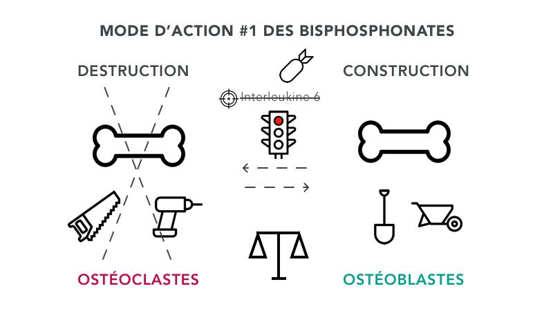 mode d'action des bisphosphonates