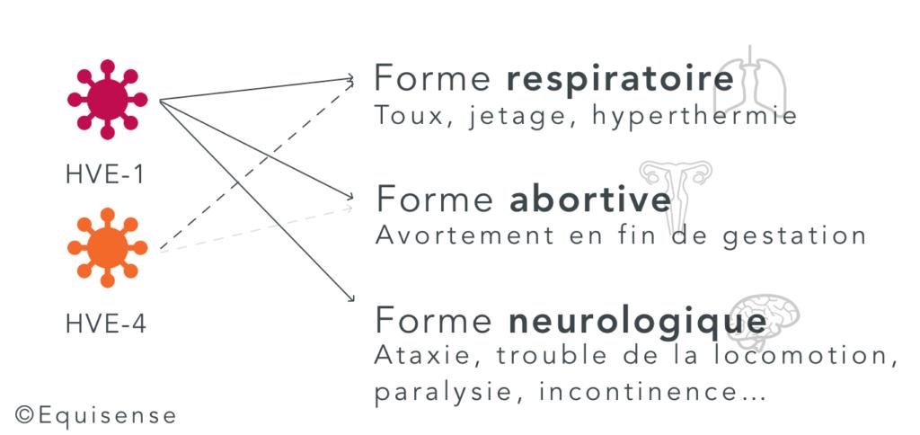 rhinopneumonie