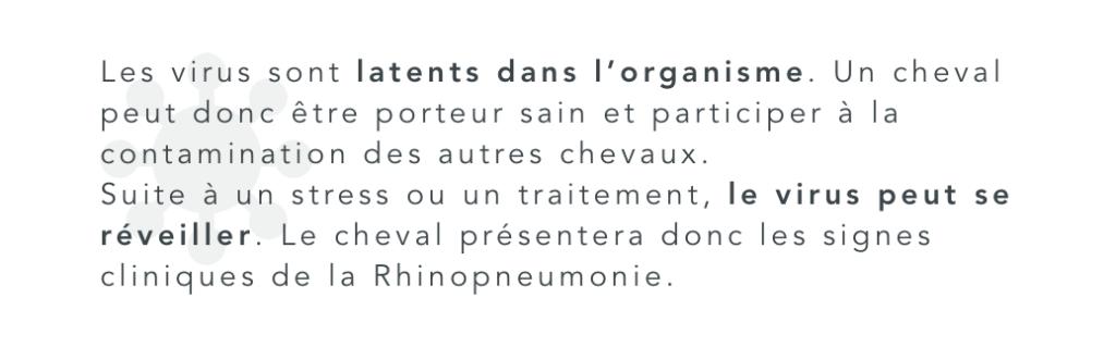les virus de la rhinopneumonie équine sont latents