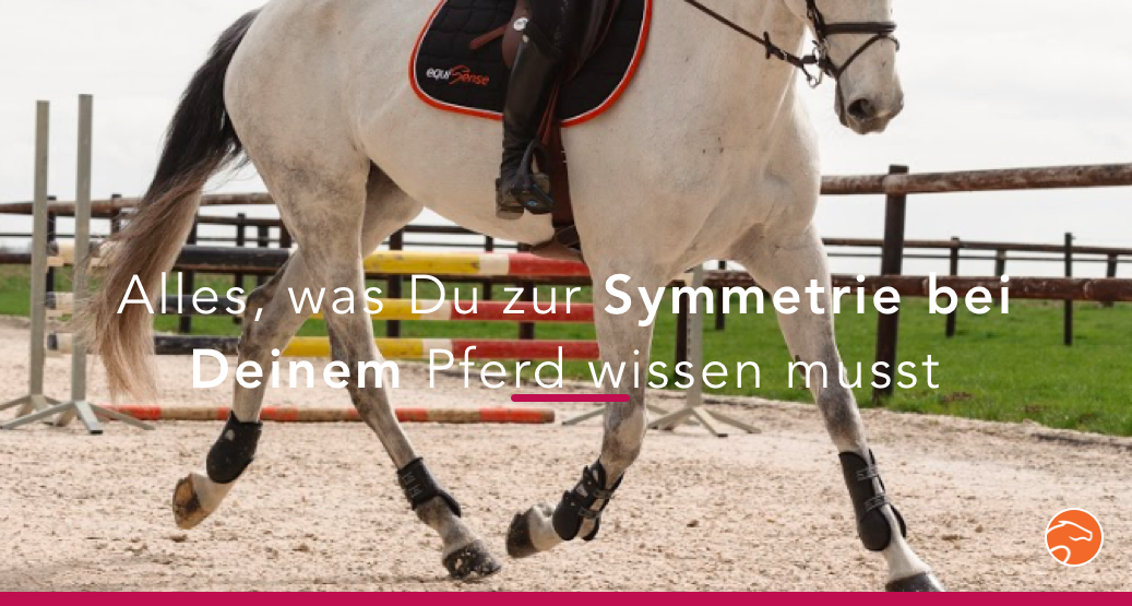 Symmetrie_Equisense_Motion_Titel