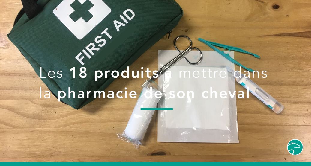 trousse pharmacie cheval