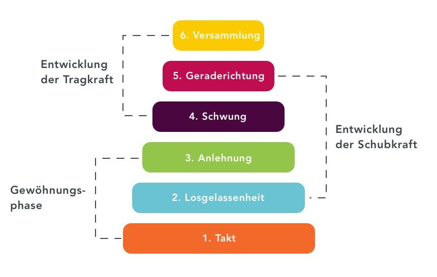 Ausbildungsskala_Schwung_Equisense_DE