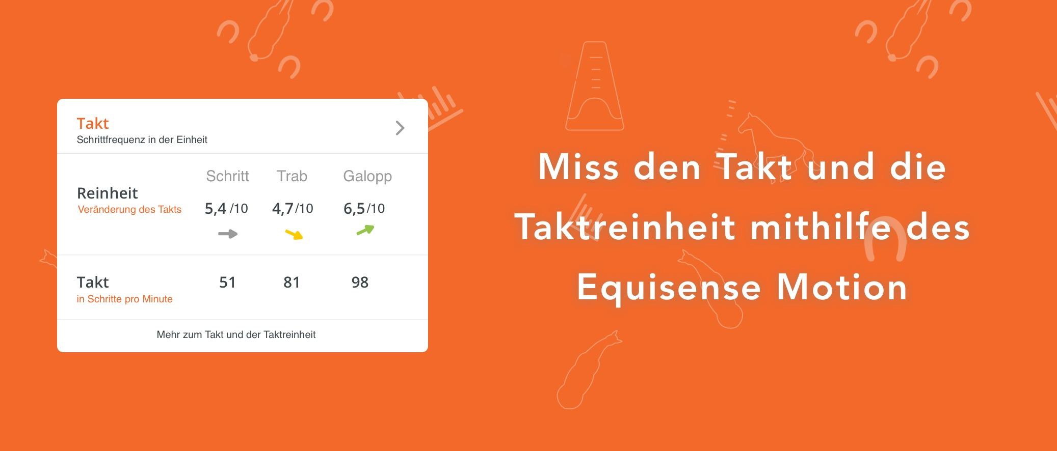 Takt_Schwung_Equisense_DE