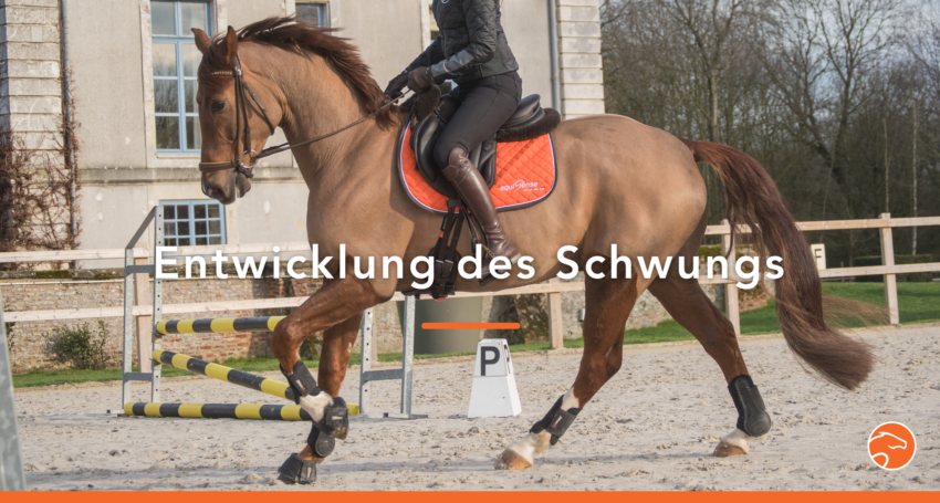 Titel_Schwung_DE