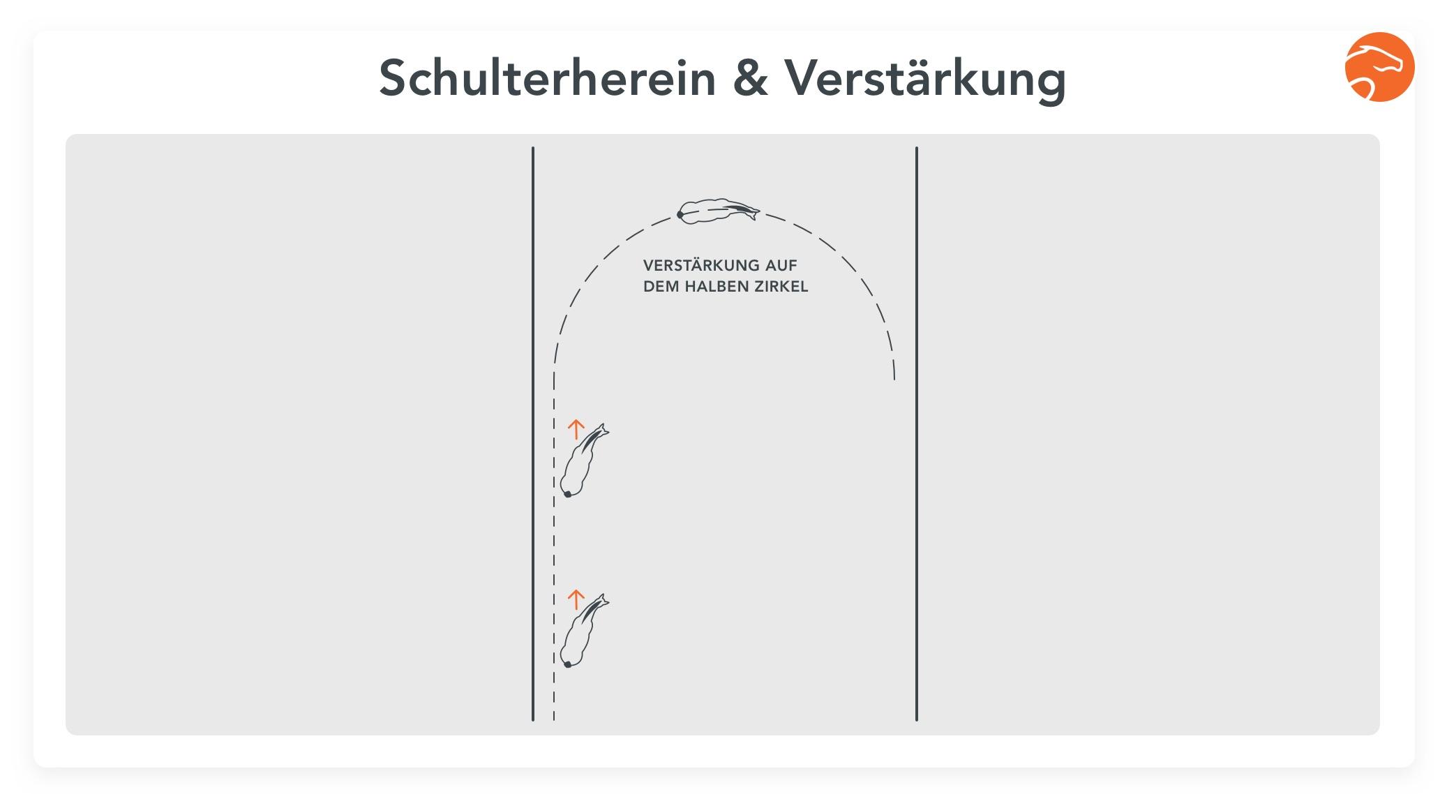 Übung4_Schwung_Equisense_DE