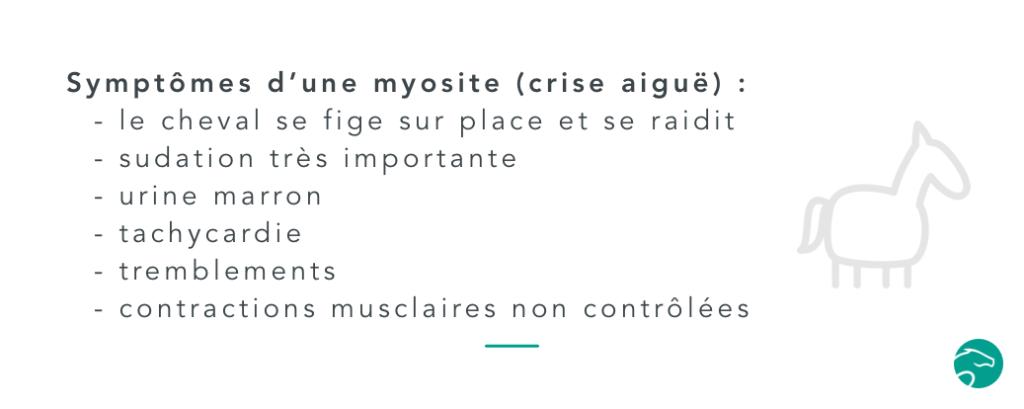 symptômes d'une myosite ou d'un coup de sang chez le cheval