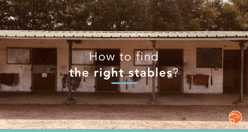 How to find the right stables
