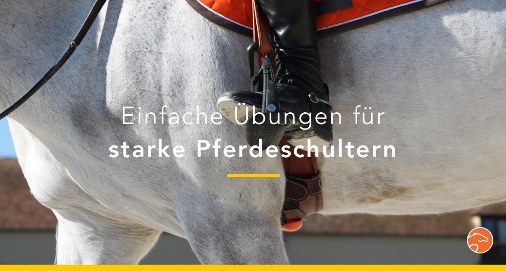 Titel_Pferdeschultern_Übungen