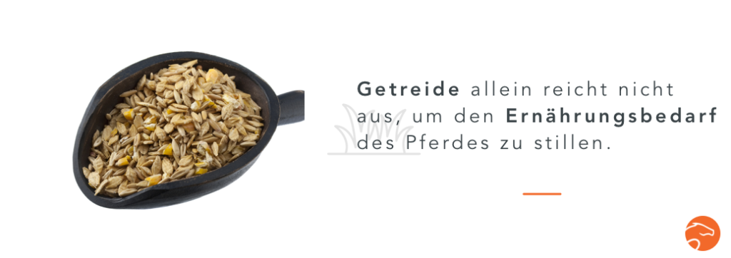 Bedarf_Pferd_getreidefreies_Pferdefutter