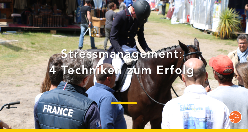 Titel_stress_Reiten_Stilspringen