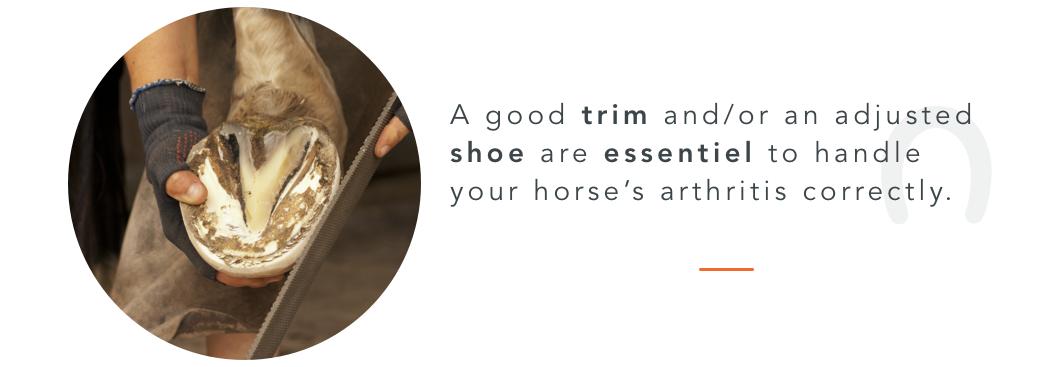 arthritis trim hoof