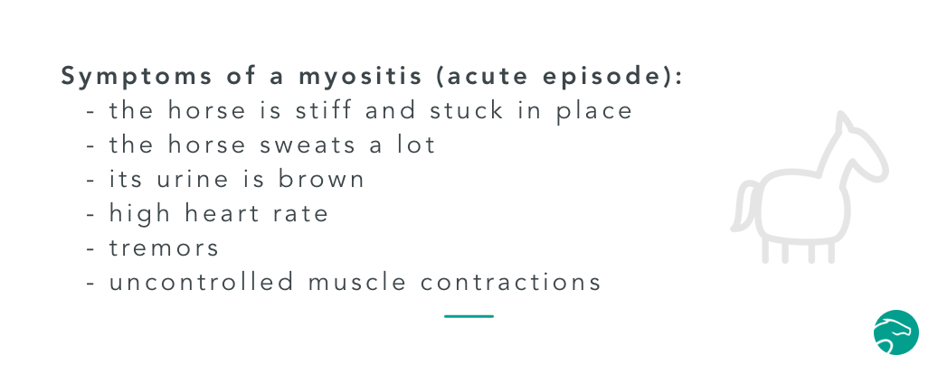 myositis symptoms
