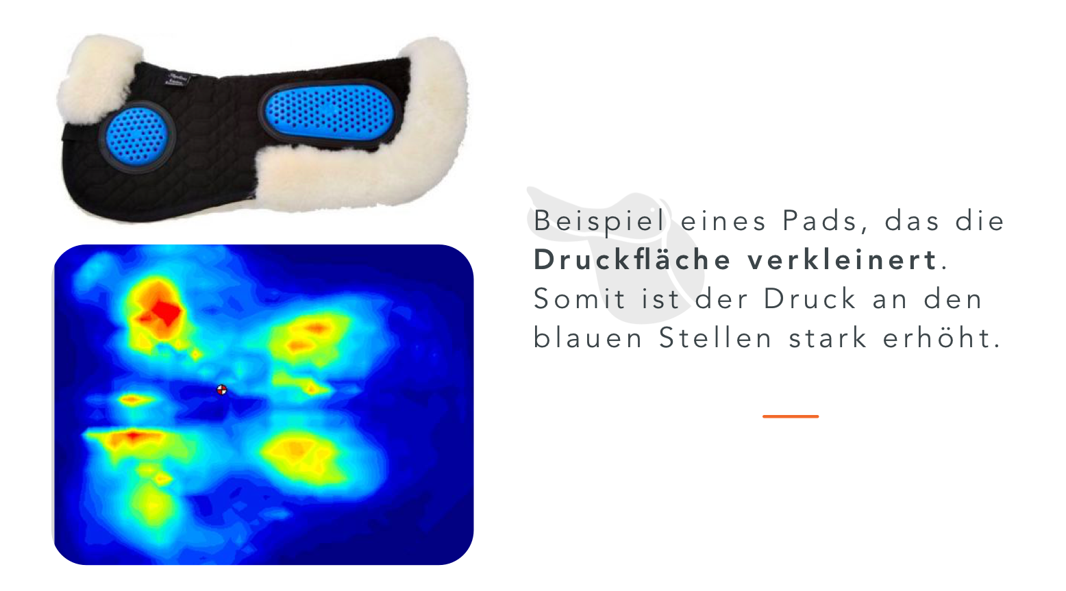 Sattelpad_Beispiel_Druck_8