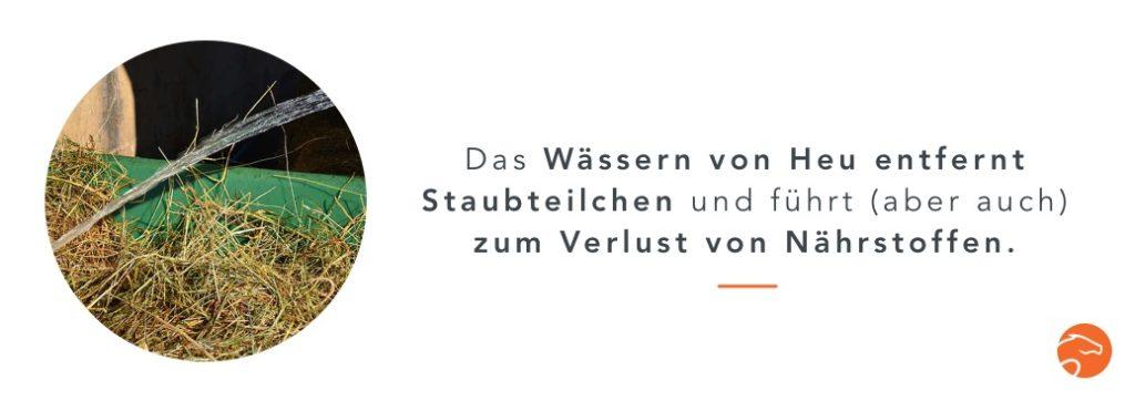 Wässern_Heu_DE