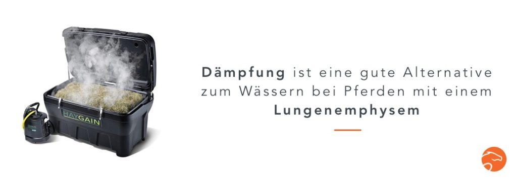 Wässern_Heu_Dämpfen_DE