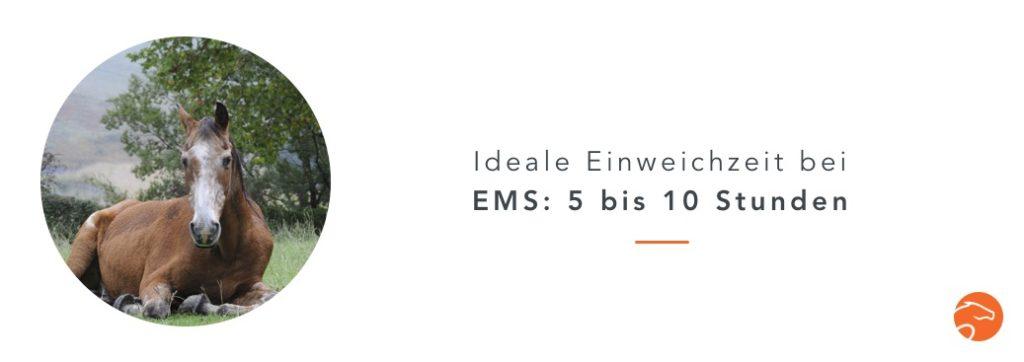 Wässern_Heu_EMS_DE