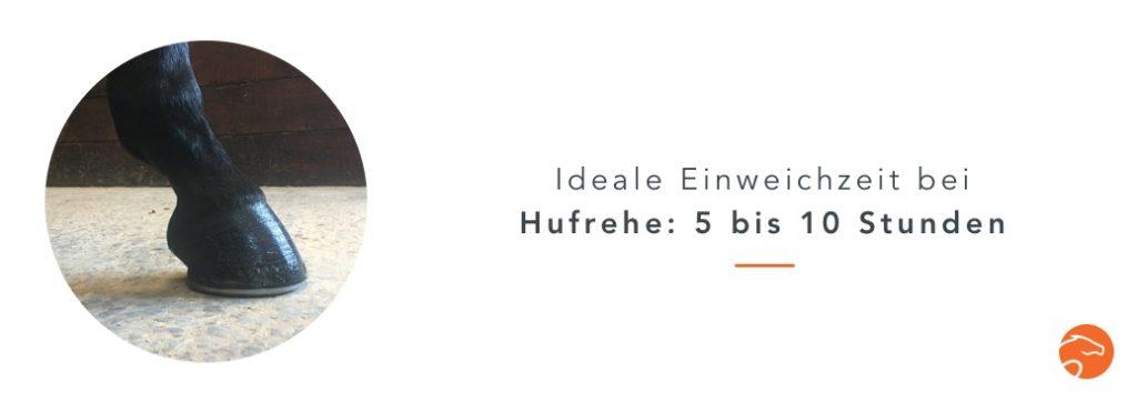 Wässern_Heu_Hufrehe_DE