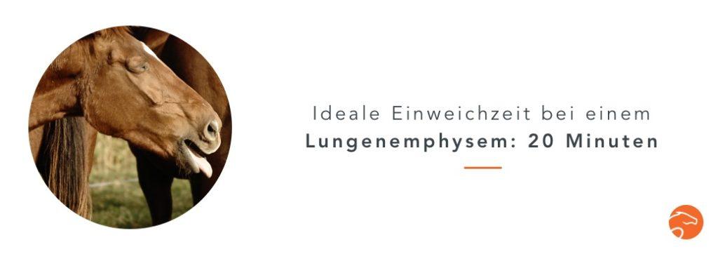 Wässern_Heu_Lungenemphysem_DE