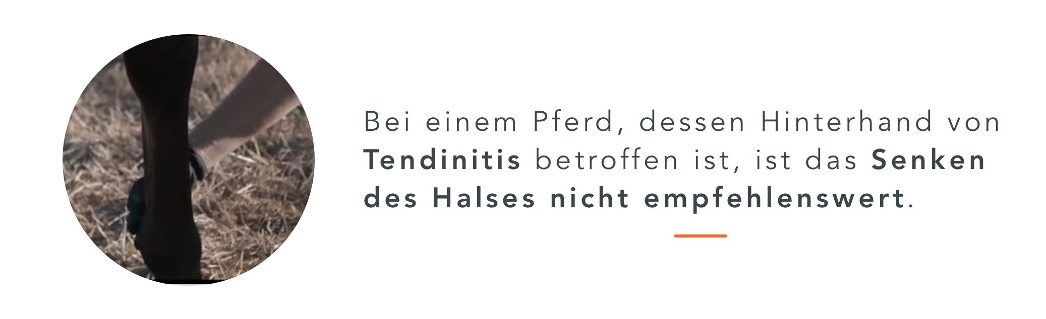 Halsmuskulatur_Tipps_DE