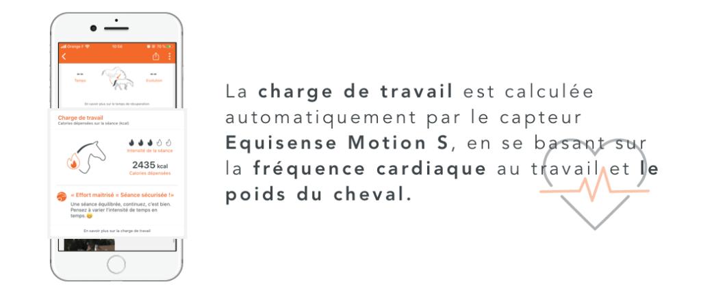mesure de la charge de travail du cheval par le capteur Equisense Motion S