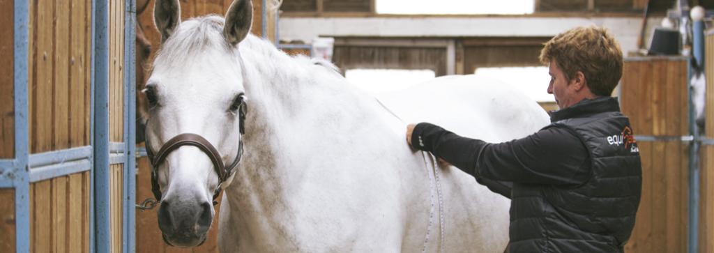 mesurer le poids du cheval