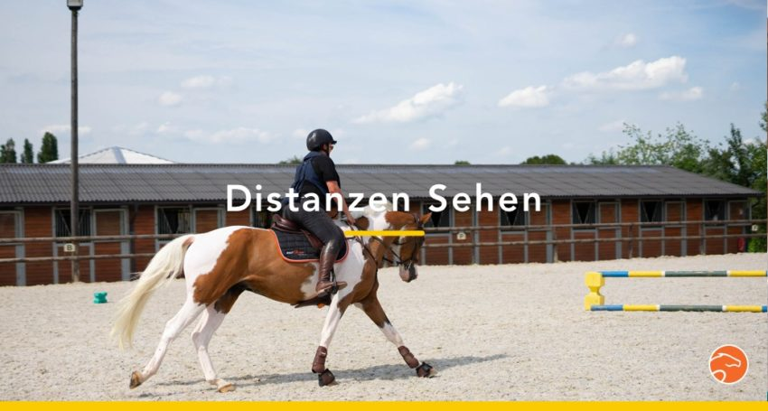 Distanzen_sehen_Titel_DE