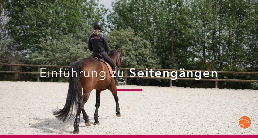 Einführung zu Seitengängen für junge Pferde