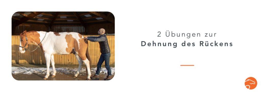 Dehnübungen_Pferd_Rücken