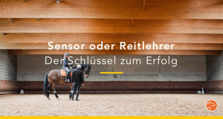 blog_Reitlehrer_Sensor_Titel