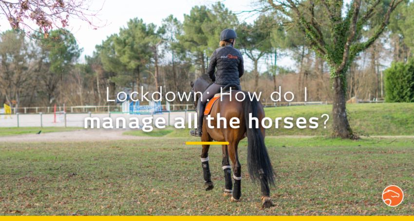 lockdown_managing_horses_EN
