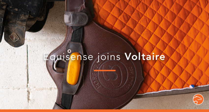 Equisense_Voltaire_header_EN