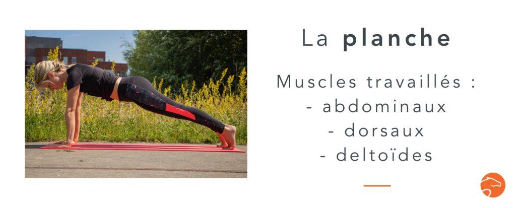 exercices de musculation spécial cavalier la planche