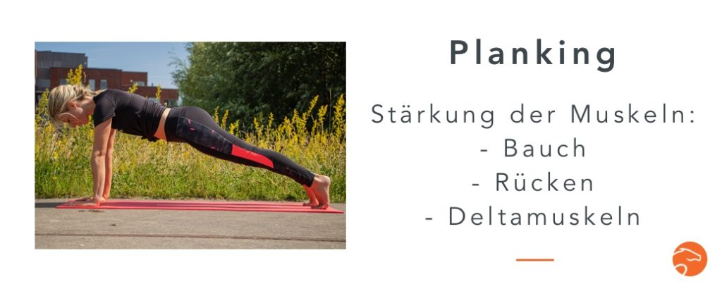Muskelaufbau Reiter Planking