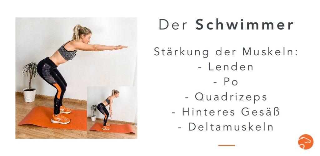 Muskelaufbau Reiter Schwimmer