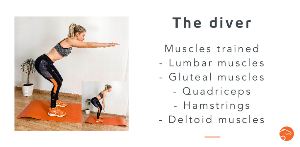 the diver, a good strength training exercise for riders