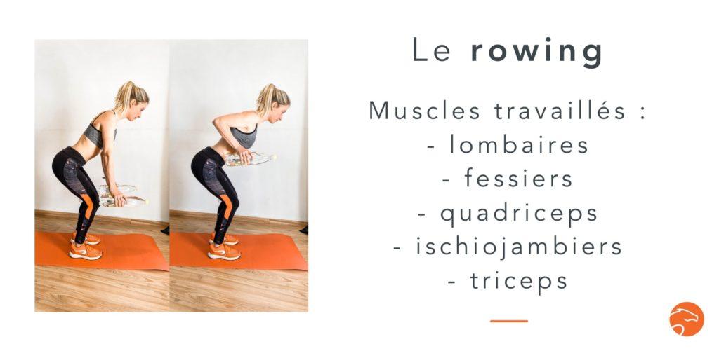 exercices de musculation spécial cavalier le rowing