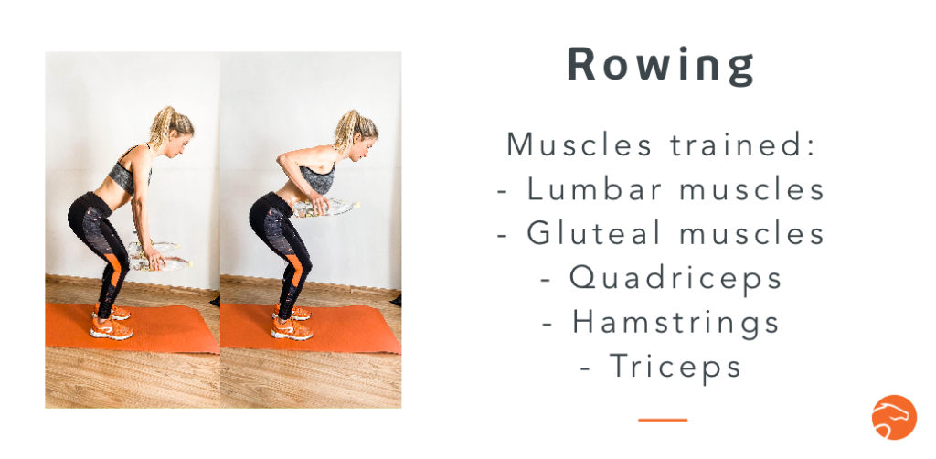the rowing, a good strength training exercise for riders