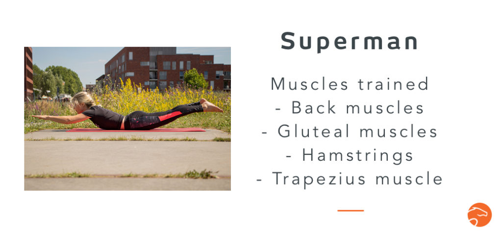 the superman, a good strength training exercise for riders