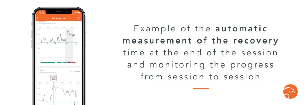 recovery measurement thanks to a heart rate monitor with your horse