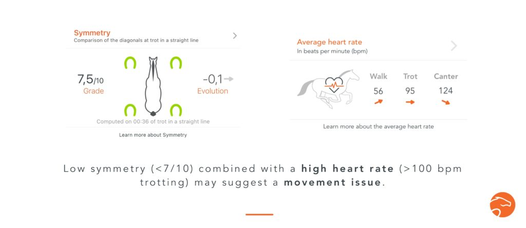 example of use of a Heart Rate Monitor with Your Horse