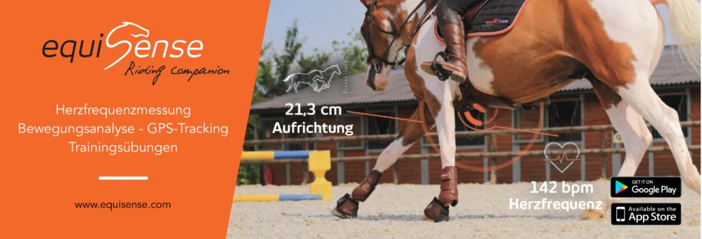 Springparcours Reithalle Herzfrequenzmessung Pferd