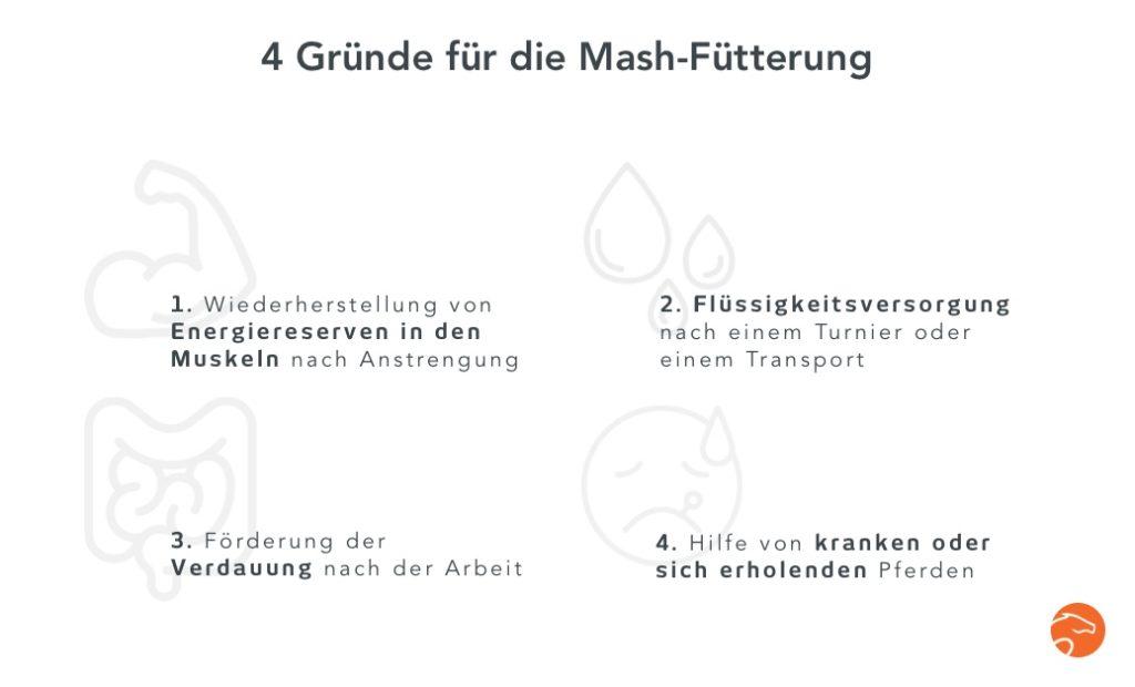 Fütterung von Mash 4 Vorteile