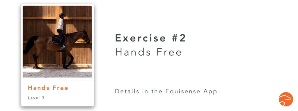 The hands free is a good exercise for riders to improve their jumping position